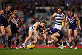 Lincoln McCarthy of the Cats and Michael Barlow of the Dockers contest for the ball during the round 17 AFL match between the Fremantle Dockers and...