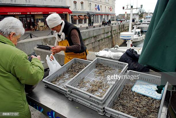 Linda Bouche shrimp fisherwoman in the estuary of the Seine River on the boat called 'Coeur de marin' with her husband Etienne Bouche directly sells...