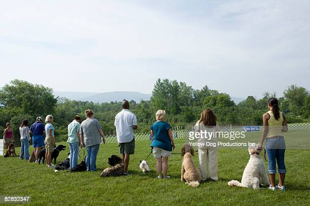 Line up of owners and dogs at dog obience school