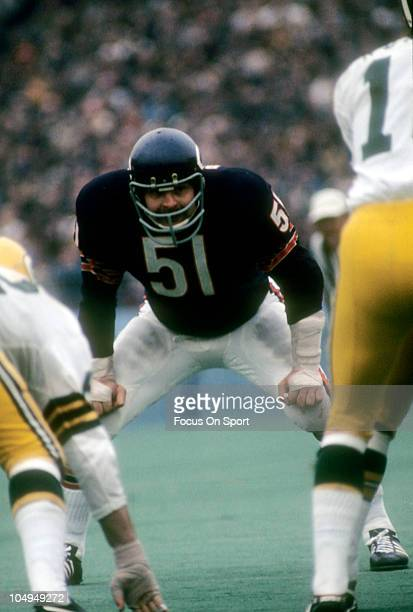 Linebacker Dick Butkus of the Chicago Bears bends over with his hands on his knees waiting for the snap of the ball against the Green Bay Packers...