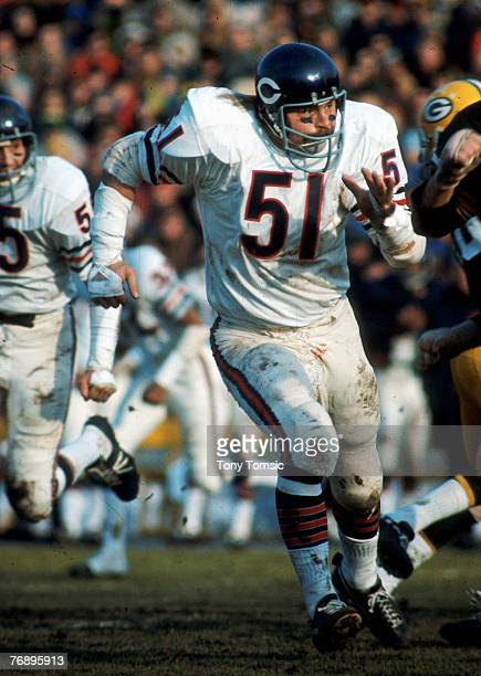 Linebacker Dick Butkus of the Chicago Bears follows the ball during the game against the Green Bay Packers on December 12 1971 at Lambeau Field in...