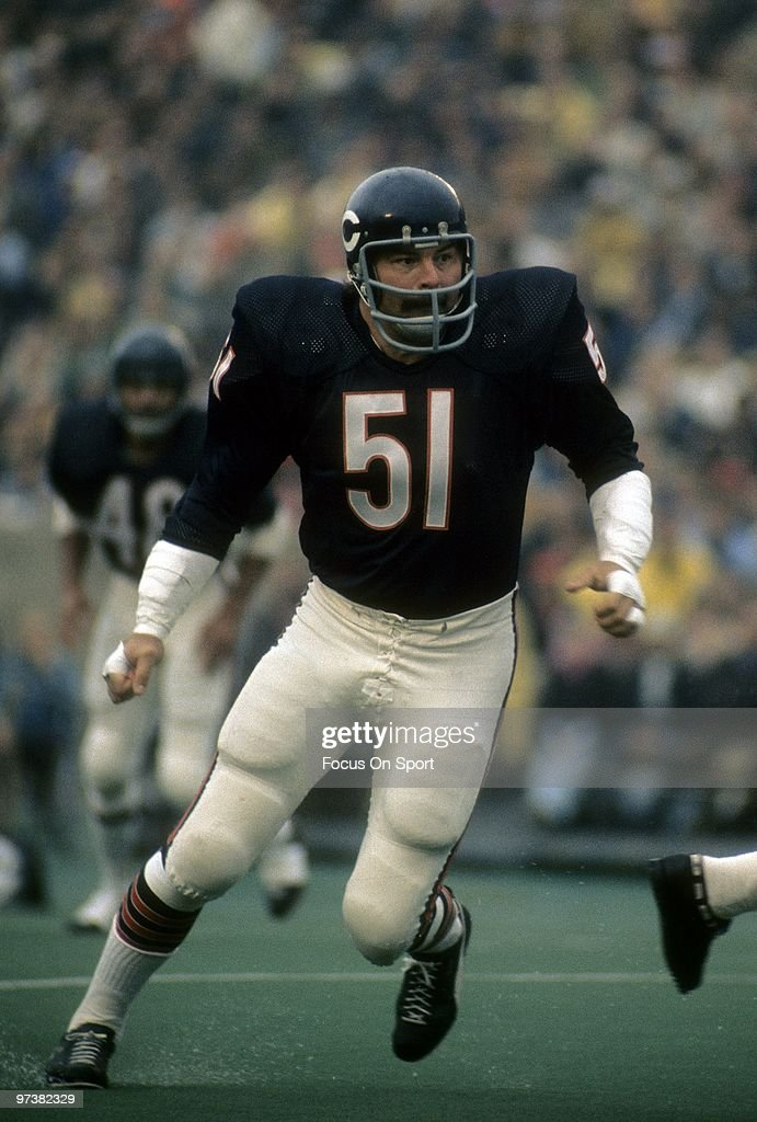 Linebacker <a gi-track='captionPersonalityLinkClicked' href=/galleries/search?phrase=Dick+Butkus&family=editorial&specificpeople=809708 ng-click='$event.stopPropagation()'>Dick Butkus</a> #51 of the Chicago Bears in action against the Pittsburgh Steelers during an NFL football game Septermber 19, 1971 at Soldier Field in Chicago, Illinois. Butkus played for the Bears from 1965-73.
