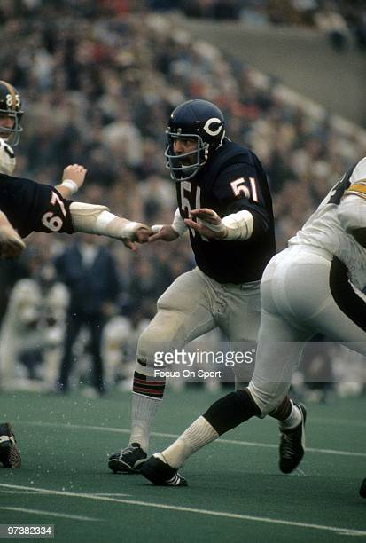 Linebacker Dick Butkus of the Chicago Bears in action against the Pittsburgh Steelers during an NFL football game Septermber 19 1971 at Soldier Field...