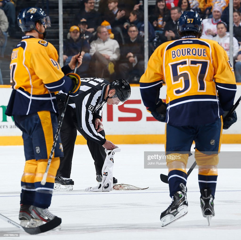 Linesman Brian Murphy #93 removes a catfish from the ice during the first period action between the Nashville Predators and the Detroit Red Wings at Bridgestone Arena on December 30, 2013 in Nashville, Tennessee.