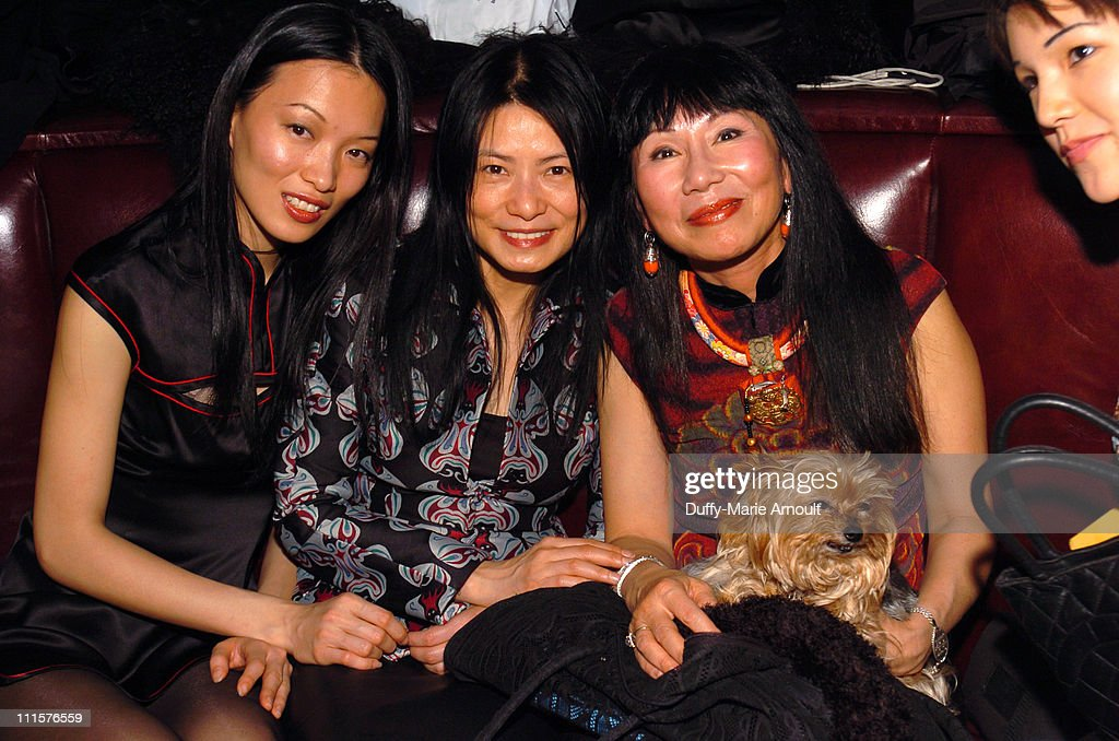 "amy tan james baldwin Literary analysis a pair of tickets by amy tan  amy tan is an author who uses the theme of  sonny's blues in ""sonny's blues,"" by james baldwin,."