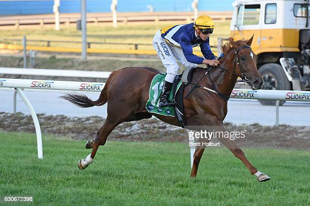 Linguist ridden by Chris Symons wins Procon Developments Maiden Plate at Cranbourne Racecourse on December 30 2016 in Cranbourne Australia