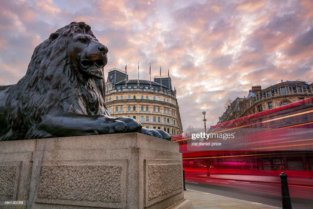 Lion and passing Bus at Trafalgar Square, London