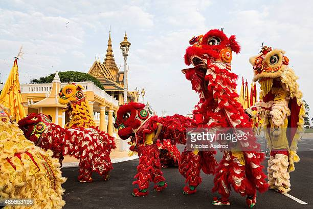Lion dancers prepare to perform in front of the Royal Palace on January 30 2014 in Phnom Penh Cambodia Lion and Dragon dancers gathered today to...