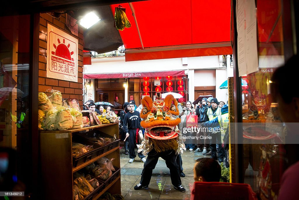A lion dances in front of cabbage hanging in a shop doorway, a sign of prosperity for the coming new year on February 10, 2013 in London, England. London's Chinese community celebrate the start of the Year of The Snake with traditional dancing, music and fireworks.