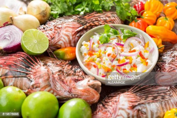 Ceviche de pescado de León