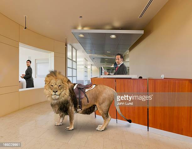 Lion in the lobby