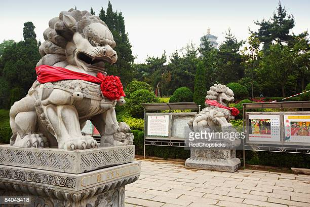 Lion statues in a temple, Zhanshan Temple, Qingdao, Shandong Province, China