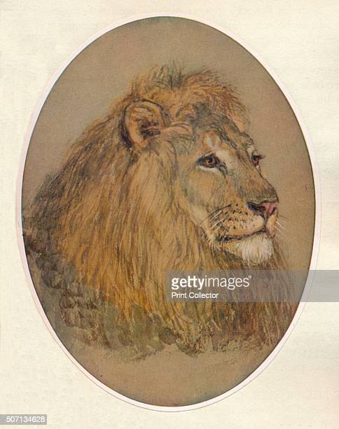 Lion's Head' c1896 From A Catalogue of the Pictures and Drawings in the collection of Frederick John Nettleford Volume III I to S by C Reginald...