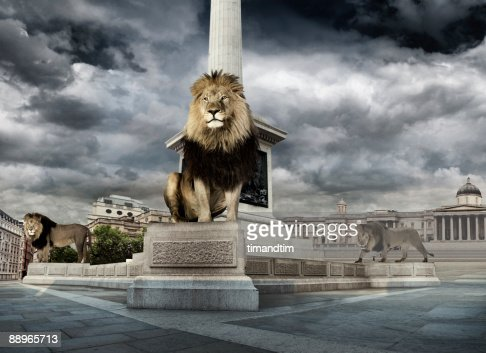 Lions in trafalgar square : Stock Photo