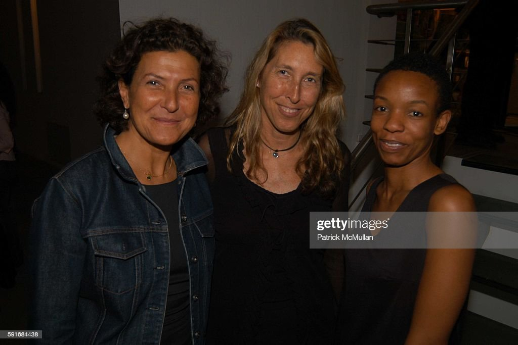 Lisa Phillips and attend New Museum Hosts Opening Reception for Aernout Mik's Refraction Rhizome Artbase 101 at New Museum Of Contemporary Art on...