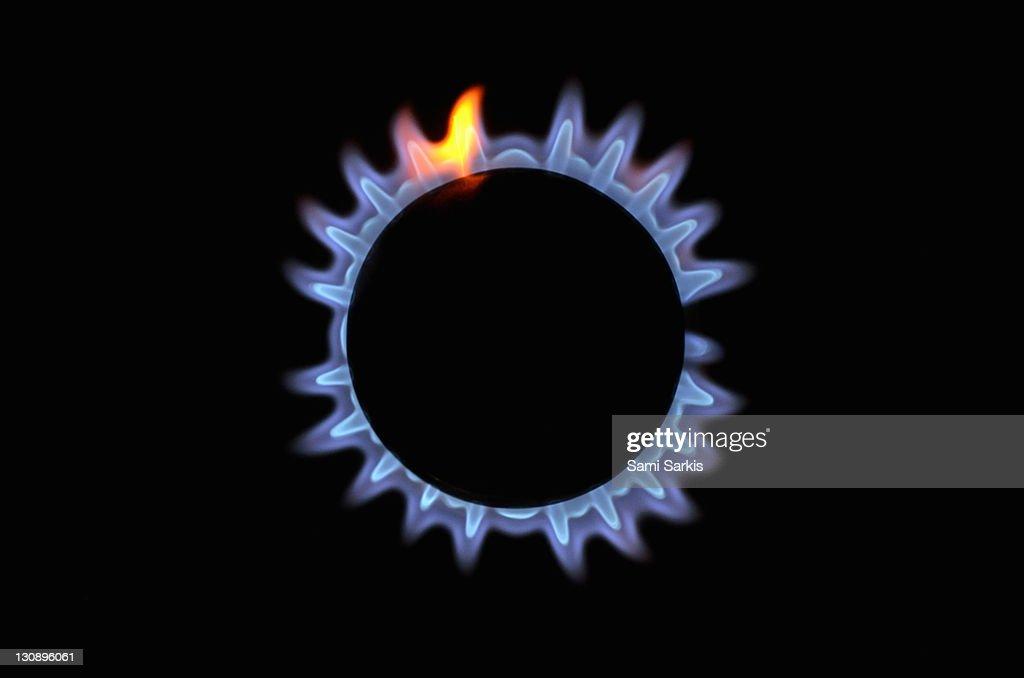 Lit blue gas stove burner, close up : Stock Photo