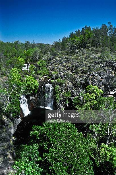 Florence Falls is a double waterfall surrounded by tropical rainforest