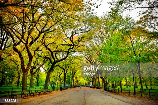 Literary Walk in Central Park at fall