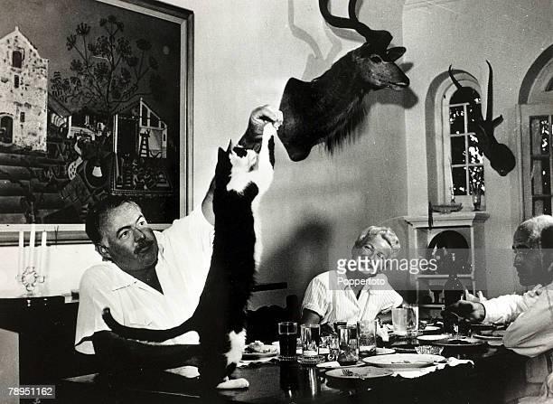 circa 1940's Author Ernest Hemingway watched by his wife Mary feeds tit bits to the cat at dinner Ernest Hemingway US writer of novels and short...