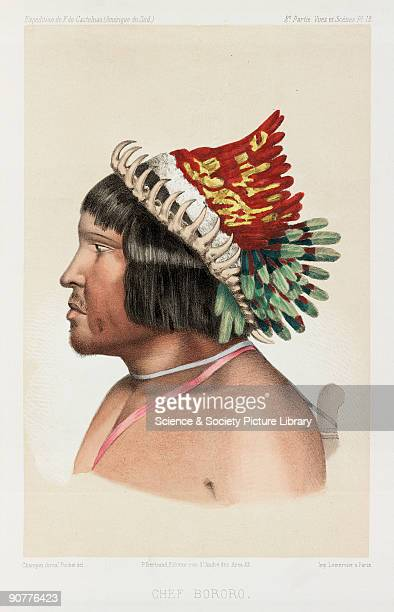 Lithograph by Pochet of a chief of the Bororo a group of people found in Brazil and Bolivia He wears an elaborate feather headdress From �Expedition...