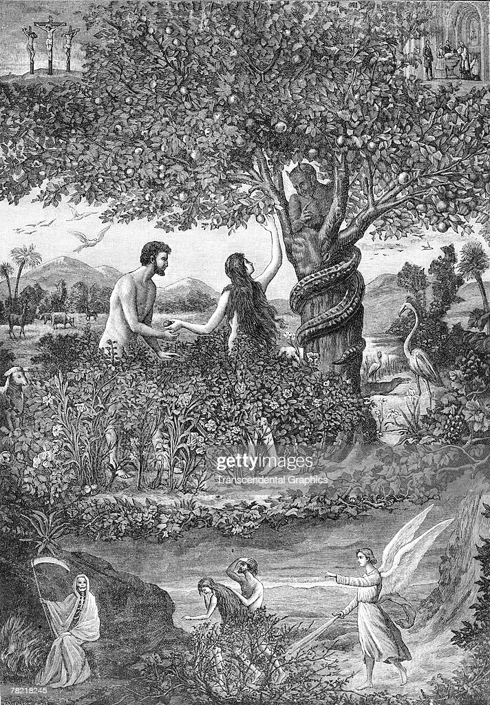 Lithograph, printed by la Maison de la Bonne Presse, depicts the biblical scene of Adam and Eve in the Garden of Eden, late 1800s or early 1900s. (Photo by Transcendental Graphics/Getty Images)etc
