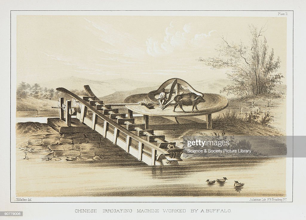 Lithographed plate by Ackerman after a drawing by J B Meffert showing an animalpowered mechanism for drawing water uphill Commodore Matthew Calbraith...