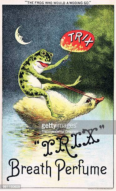 A lithographic Victorian trade card with a laughable frog riding a duck to promote breath mints Rochester New York circa 1880