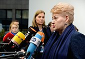 Lithuanian President Dalia Grybauskaite addresses journalists as she arrives ahead of the European Union summit at the EU headquarters in Brussels on...