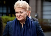 Lithuanian President Dalia Grybauskaite arrives ahead of the European Union summit at the EU headquarters in Brussels on December 18 2014 EU leaders...