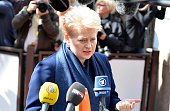 Lithuanian president Dalia Grybauskaite speaks to the media upon her arrival at the EU headquarters before the European Union summit in Brussels...