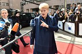 Lithuania's President Dalia Grybauskaite addresses reporters as she arrives at the European Council headquarters for an extraordinary summit of...