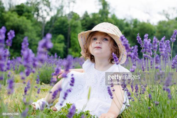 little baby sitting on lavender field