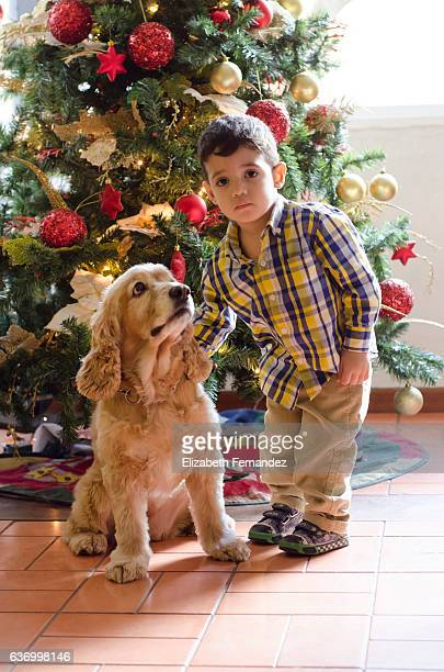 A little boy and his dog at Christmas