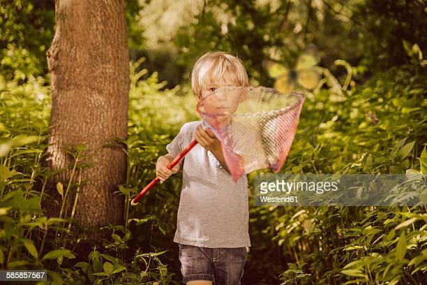 Little boy catching butterflies in a forest