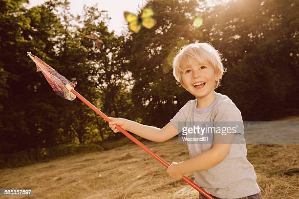 Little boy catching butterflies on a field