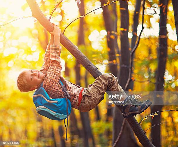 Little boy climbing the autumn tree