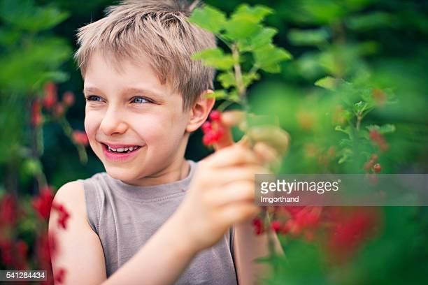Ragazzino mangiare frutta fresca ribes rosso