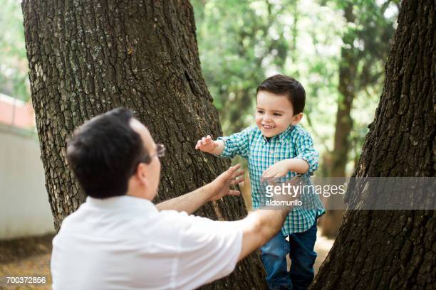 Little boy jumping from tree to father's arms