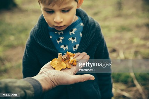Little boy looking at chanterelle mushrooms in mans hand