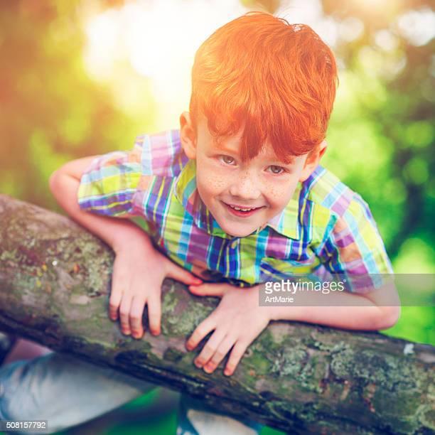 Little boy on a tree