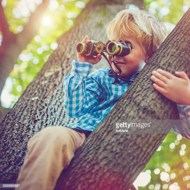 Petit garçon sur un arbre