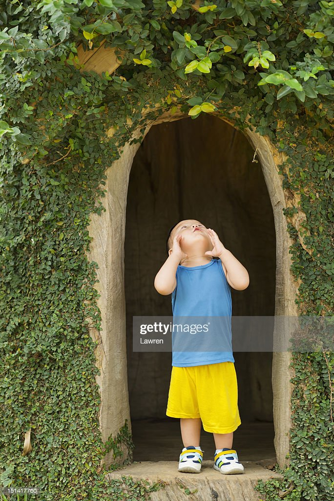 Little boy playing in tree house : Stock Photo