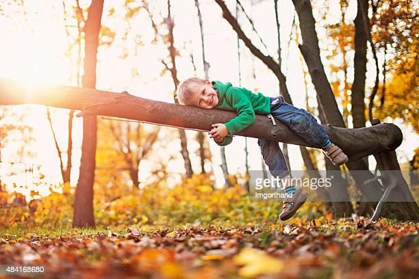 Kleiner Junge spielt auf Baum im Herbst