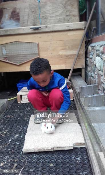 Little Boy Playing With Rabbit In Yard