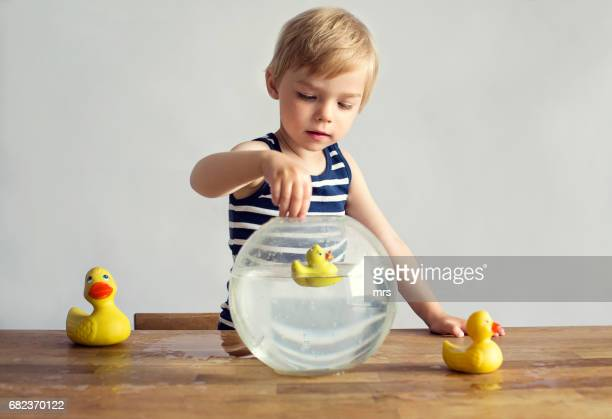 Little boy playing with rubber ducks