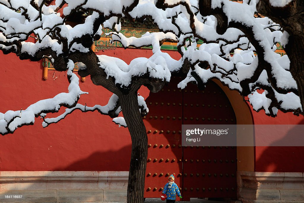 A little boy plays snow at the Imperial Ancestral Temple following overnight snowfall on March 20, 2013 in Beijing, China. Beijing witnessed a heavy spring snowfall with a depth reaching 10-17 centimeters overnight.