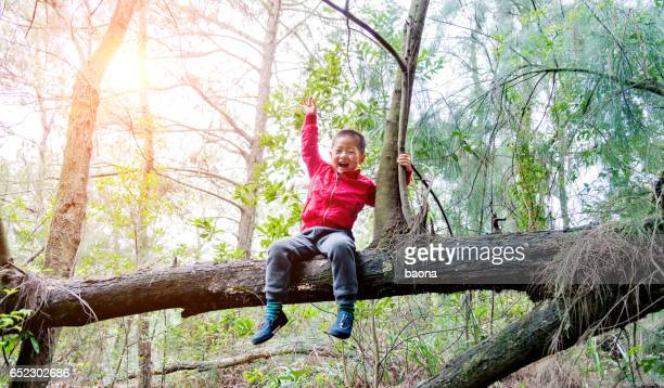 Little boy sitting on a branch