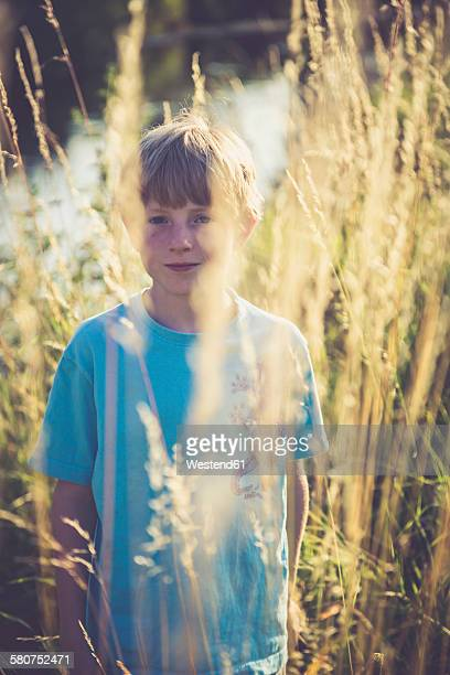 Little boy standing on a meadow at backlight