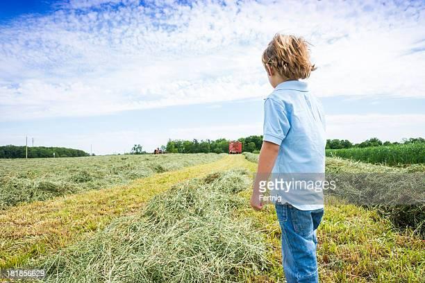 Ragazzino guardando gli agricoltori haying