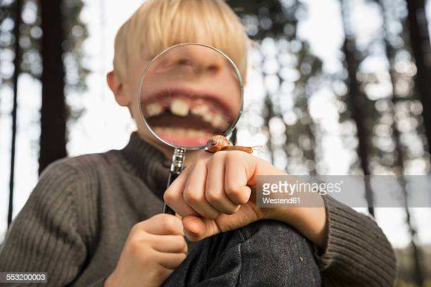 Little boy watching snail with magnifying glass in a forest